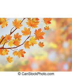 Farbiger Herbst hinterlässt Hintergrund.