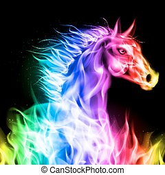 feuer, horse., bunte