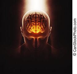 figur, medizin, gehirn, mann, bild, 3d