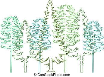 Fir-Bäume, Vektor.