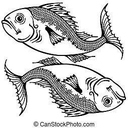Fische schwarzweiß.