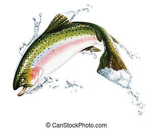 Fische springen aus dem Wasser, mit ein paar Spritzern.
