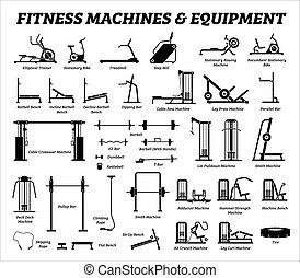 Fitness, Kardio- und Muskelaufbaumaschinen, Ausrüstung im Fitnessstudio.