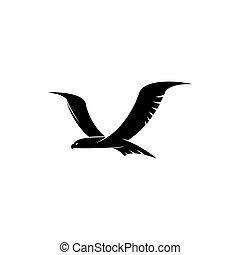 fliegendes, falke, vogel, freigestellt, silhouette