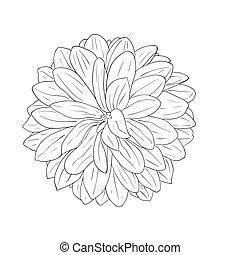 Floral-Designelement und handgefertigt, Vektor-Illustration