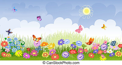 Flower Wiese Panorama