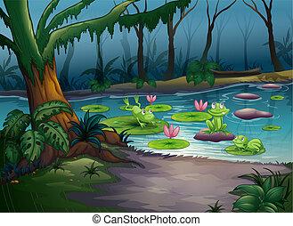 Frösche und ein Fluss