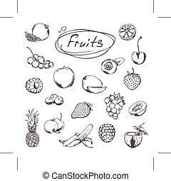 Früchte und Beeren, Zeichnungen von Ikonen.