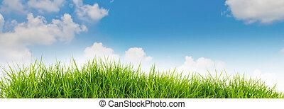 Frühling Natur Hintergrund mit Gras und blauer Himmel im Hintergrund .Sommerzeit