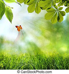 Frühling und Sommerhintergrund abbrechen