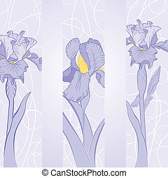 Frühlings-Iris-Blume in Band