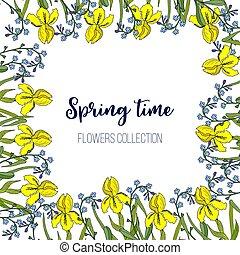 Frühlingsblumen Iris und vergessen-ich-nicht Rahmen