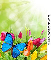 Frühlingsblumen mit Schmetterling