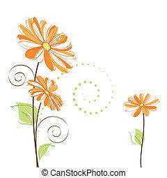 Frühlingsfarbene Daisy-Blume im weißen Hintergrund