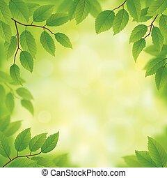 Frühlingsgrüne Blätter.