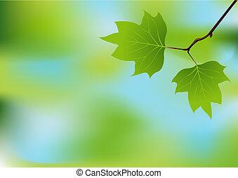 Frühlingszweig-Hintergrund
