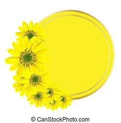 frame.., fruehjahr, gelber , oder, weißes, runder , abbildung, design, sales., werbung, beförderungen, hintergrund., flowers., muster, hintergrund, freigestellt, inscription.