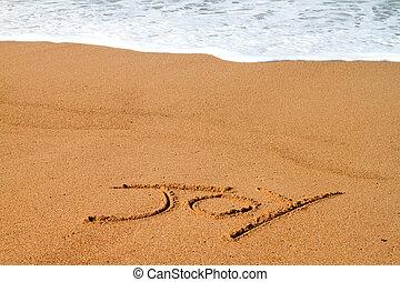 freude, geschrieben, sandstrand