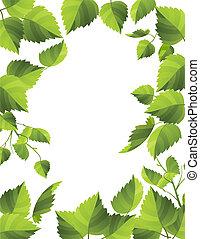 Frische grüne Blätter mit Tau