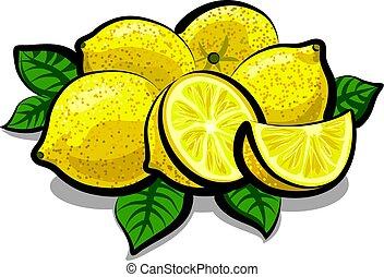 Frische saftige Zitronen.