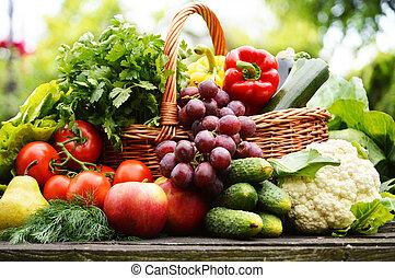 Frisches organisches Gemüse im Korb im Garten