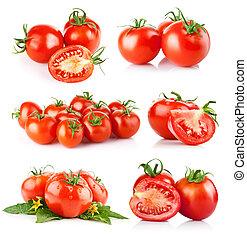 Frisches Tomatengemüse