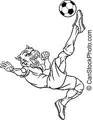 fußball, maskottchen, sport, spieler, tier, fußball, tiger