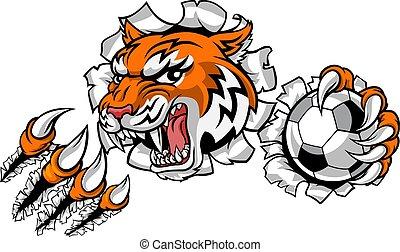 fußball, sport, spieler, tiger, tier, maskottchen, fußball