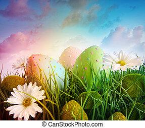 gänseblümchen, eier, regenbogen, himmelsgewölbe, farbe, gras, groß