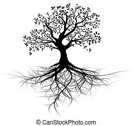 Ganzer Vektor Schwarzbaum mit Wurzeln
