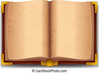 Geöffnetes altes Buch.