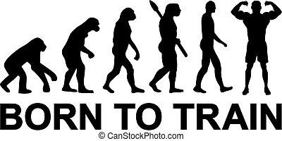 Geboren, um die Evolution zu trainieren.