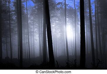 Gefährlicher Wald