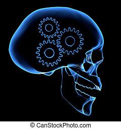 Gehirnmechanismus.