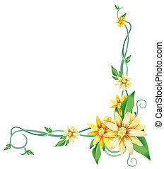 Gelbe Gänseblümchen und Reben