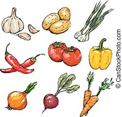 Gemüse bereit. Vector Illustration