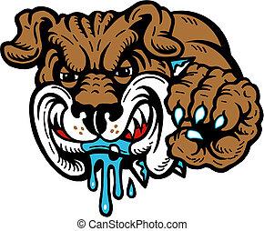 Gemeine Bulldogge