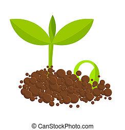 Germinalpflanzen