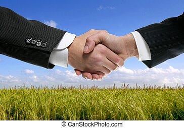 Geschäftspartner schütteln die Hände in der Natur