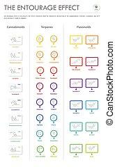 geschaeftswelt, effekt, formeln, infographic, strukturell, begleitung, senkrecht