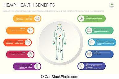 geschaeftswelt, infographic, gesundheit, horizontal, vorteile, hanf