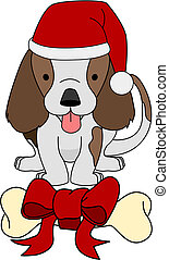 geschenk, knochen, abbildung, hund