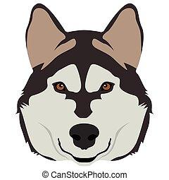 gesicht, hunde ikone
