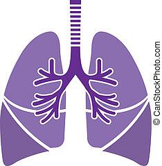 Gesunde Lungen.