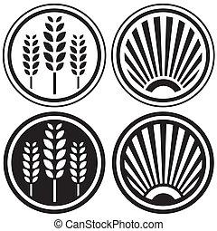 Gesundes Essen und Getreidesymbol
