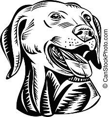 gewehr, apportierhund, weißes, schwarz, holzschnitt, labrador, kopf, retro, hund