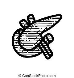 gezeichnet, ikone, hand, weißes, vektor, hintergrund, milz, abbildung, freigestellt