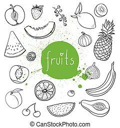 gezeichnet, vektor, hand, früchte