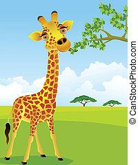 Giraffe isst Blatt