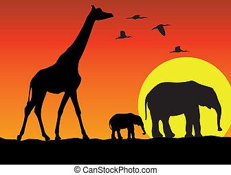 Giraffe und Elefanten in Afrika